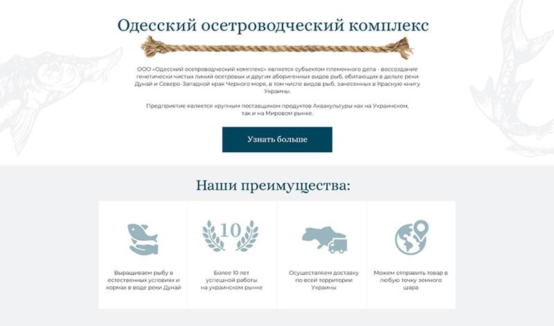 интернет-магазин wordpress